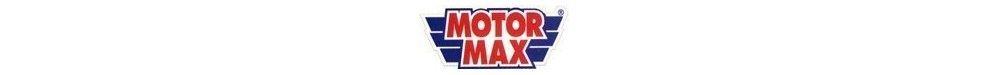 Miniaturas de Motor MAX a Escala 1:18